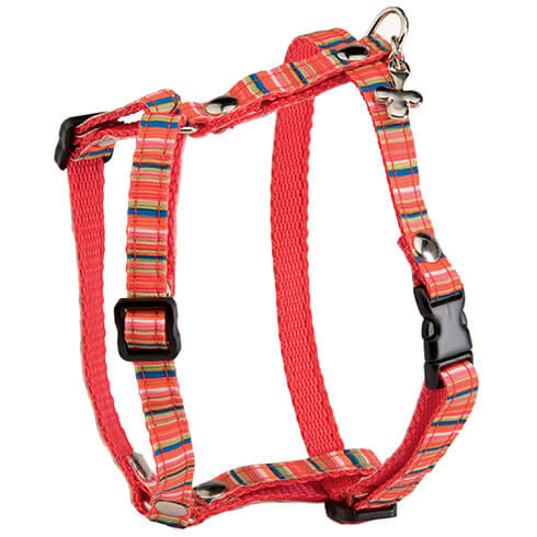 More informations about: Dog harness - Rainbow