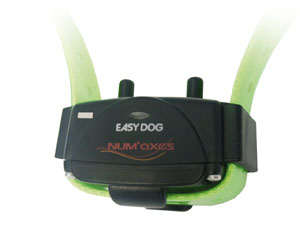 More informations about: Easy Dog Soft